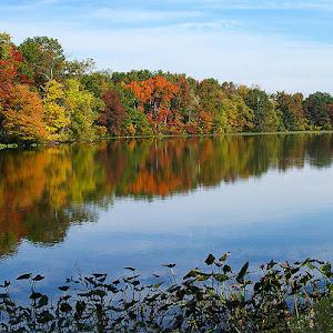 Etra Lake Autumn 11P.jpg
