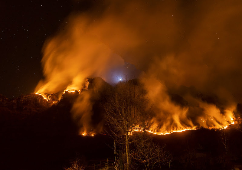 Incendio boschivo di Cris_Cri