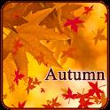 foglie di autunno decidui icon
