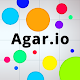 Agar.io Download on Windows