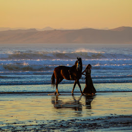 Evening Stroll by Chris Seaton - People Street & Candids ( horse, beach, sunset, animals, people,  )