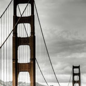 The Golden Bridge by Daniela Maskova - Buildings & Architecture Bridges & Suspended Structures
