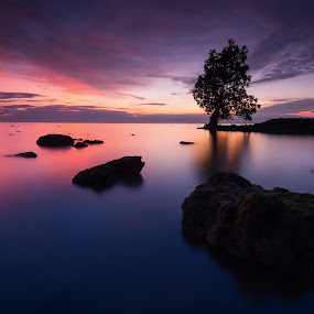 The Moment by Raffy Nadayag - Landscapes Sunsets & Sunrises ( sunrise, seascape, rocks, calm waters, lone tree, hue,  )