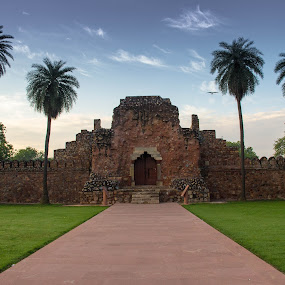 Humayun's Tomb , Delhi by Mandeep Singh - Buildings & Architecture Public & Historical ( history, tomb, mughal, humayun, delhi )