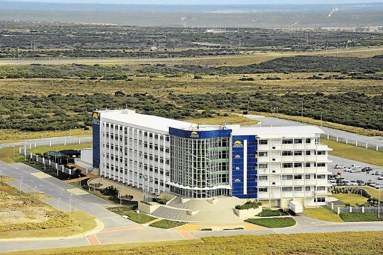 Coega Development Corporation. Picture: MIKE HOLMES