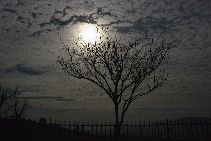 Un debole raggio di sole di luiker