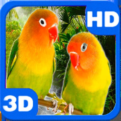 Parrots Agapornis Fischeri Bright Couple