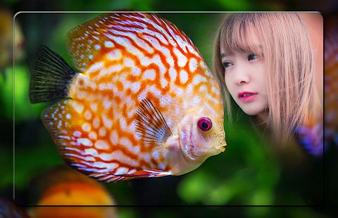 Fish Photo Frames - náhled