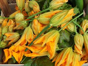 Photo: tanti fiori di zucchini