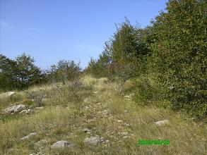 Photo: priroda na bunarinama