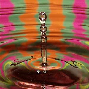 drops Jan 6 2011f1105.jpg