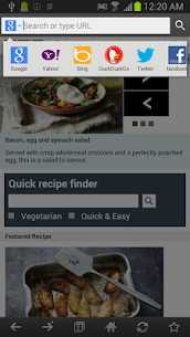 Exsoul Web Browser Apk  Download For Android 4