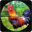 Wild Chicken Shooting: Crazy Chicken Crazy Rooster icon