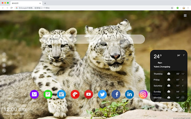 Snow Leopard New Tab HD Top Wallpapers Theme