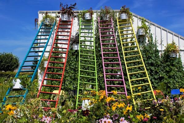 Il giardino dei colori di Tiziana Detoni