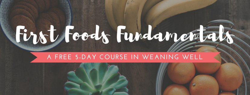 First Foods Fundamentals - A Free 5 Day Course in Weaning Well