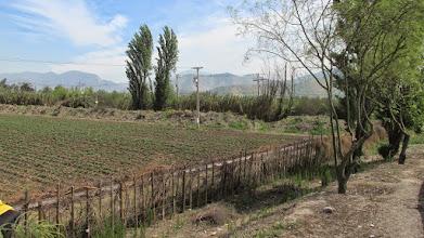 Photo: maipú