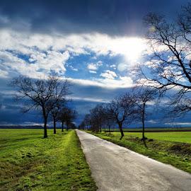 20130111_DSC_1567 by Zsolt Zsigmond - Transportation Roads ( sky, spring, sunlight, green, road, grass, clouds, trees )