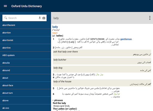 Oxford english to urdu dictionary