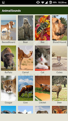 Animal sounds - App for kids screenshot 1