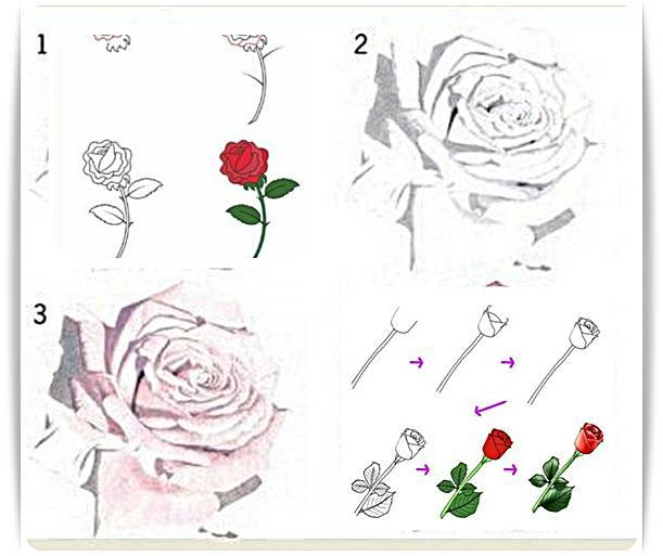 Draw flower easy android apps on google play draw flower easy screenshot ccuart Image collections