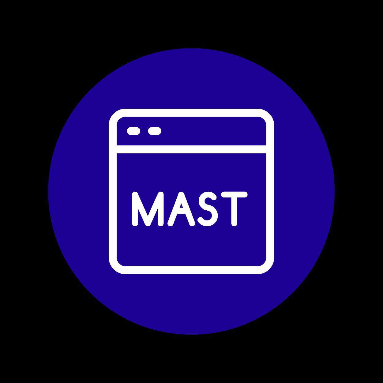 Manual Application Security Testing (MAST)