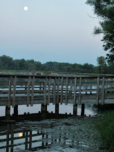 Photo: Moon over a boardwalk and reflected in lake at Carriage Hill Metropark in Dayton, Ohio.