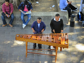 Photo: Marimba players and other musicians stroll the zocolo.