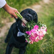 Wedding photographer Alina Stelmakh (stelmakhA). Photo of 12.06.2017