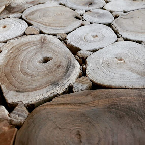 Wood by Sharmila Narwani - Nature Up Close Other Natural Objects ( wood, texture, flat, round, table,  )