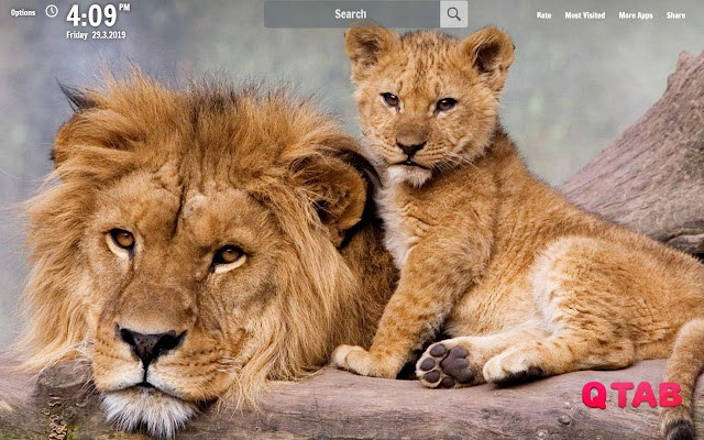 Lion New Tab Lion Wallpapers
