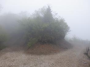 藪谷峠付近の分岐(右へ)