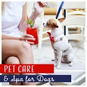Pet Care & Spa for Dogs - Healing Music for Beauty Salon, Relaxation, Relieve Anxiety, Quiet Time
