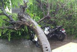 Berita terkini angin  puting beliung di Ngawi