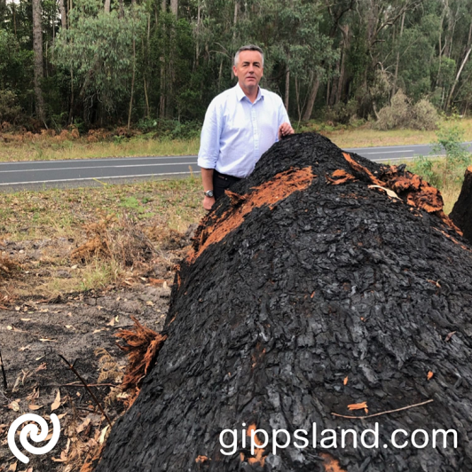 Federal Member for Gippsland Darren Chester local organisations to begin preparing their applications and access additional resources available for the Black Summer Bushfire Recovery Grants program
