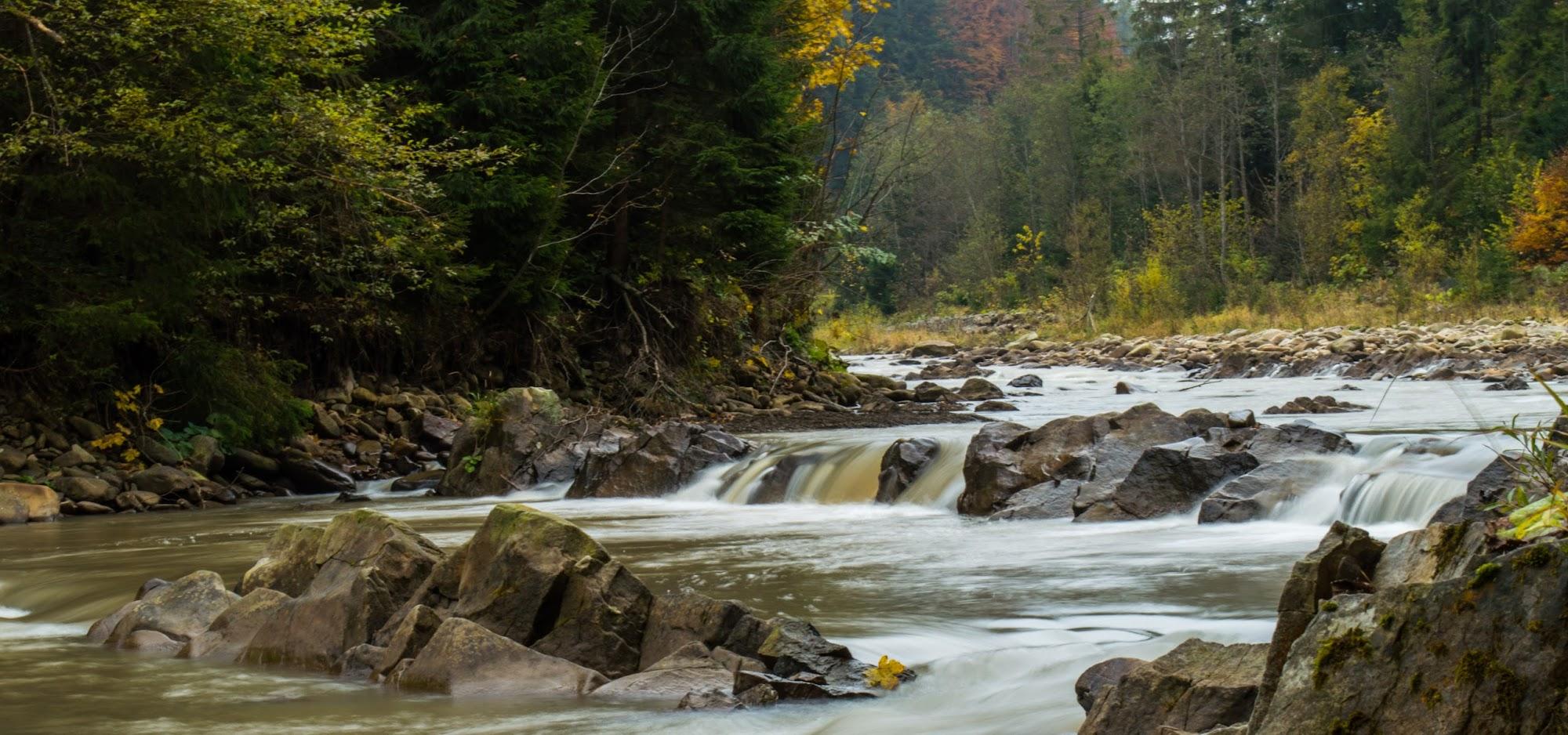 річка Свіча