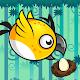 Hop Bird Forest Adventure