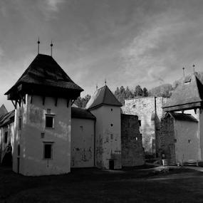 Žička kartuzija by Renato Dibelčar - Black & White Buildings & Architecture ( charterhouse, history, sky, slovenija, black and white, outdoor )