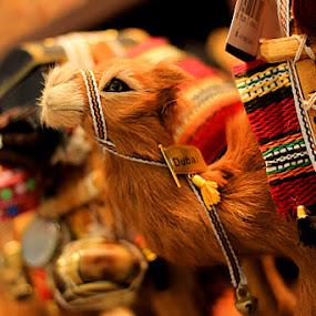 Camel  by Shahnila Ejaz - Artistic Objects Toys