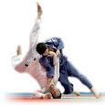 Judo Techniques Vidoes icon