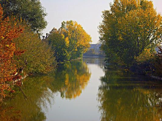 Autunno sulle rive del canale di Furlissima
