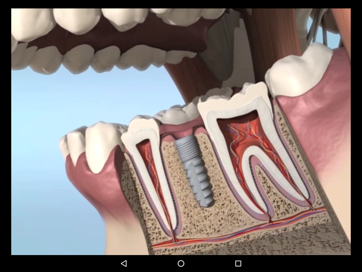 DentalNavigator- screenshot