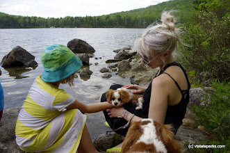Photo: Looks like some mommy time at Kettle Pond State Park by Justin Lajoie