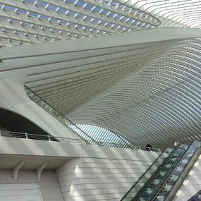 Lines by Els He - Buildings & Architecture Other Exteriors ( town, city, trainstation, belgium, building, architecture,  )
