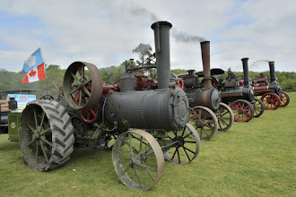 Photo: Traction Engines lined up.