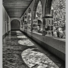 bellas artes, afternoon shadows by Jim Knoch - Black & White Buildings & Architecture ( bellas artes, sma, san miguel, black and white, san miguel de allende, mexico )