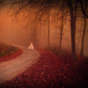 by Ivica Dujic - Wedding Bride (  )
