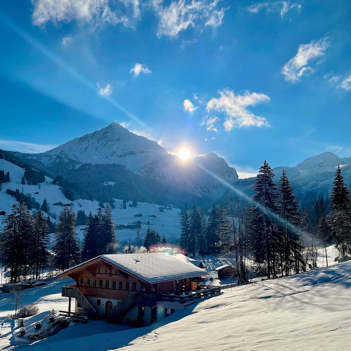 Chalet_Gstaad_26