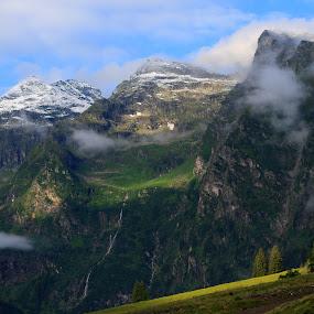 The Alps in Austria by Frederik Schulz - Landscapes Mountains & Hills ( europe, dachstein-tauern, tree, austria, alps )
