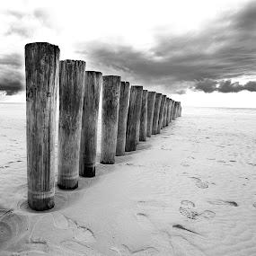 Ameland Lines  by Benjamin Arthur - Landscapes Beaches ( wood, benjamin, holland, photographer, benjaminarthur.com, beach, ameland, netherlands, photography, frisian, arthur )